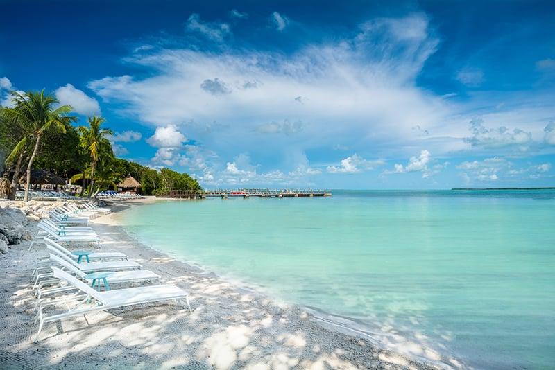 Florida Keys Coconut Beach