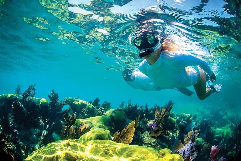 Florida Keys FK-338
