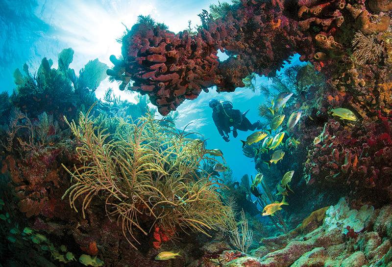 Florida Keys FK-342