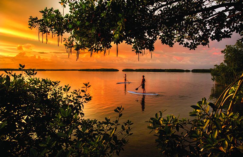 Florida Keys MCTG-4096 KEYS PADDLEBOARD HR - NO LOGO