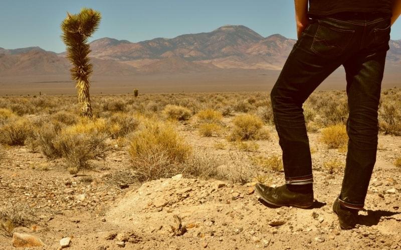 Cowboy Culture in Nevada