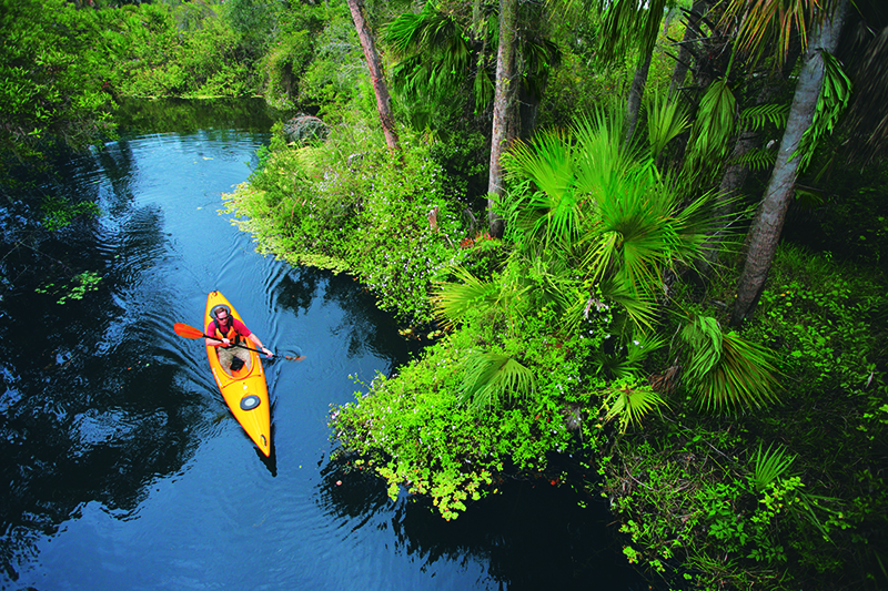 Aerial view of folks Kayaking through the Great Calusa Blueway